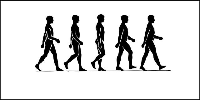 人間の歩く姿