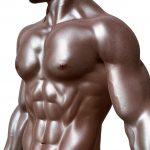 筋トレでチェンジ:筋肉の種類と骨格筋の構造